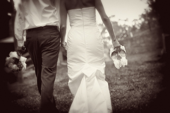 wedding and engagement-1013